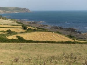 Neptune coastline with at harvest time